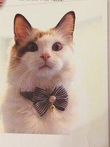 ストライプリボンカラー (S、Mサイズ)猫用首輪 Cat Amo.k