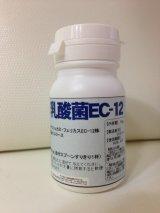 乳酸菌EC-12 ペット用栄養補助食品 10g,500g (粉末)