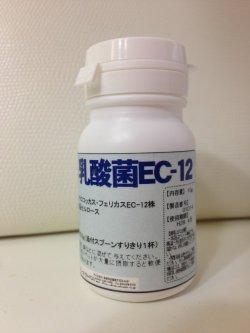 画像1: 乳酸菌EC-12 ペット用栄養補助食品 10g,500g (粉末)