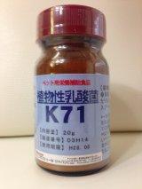植物性乳酸菌K71(ペット用栄養補助食品) 20g、500g(粉末)