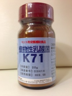 画像1: 植物性乳酸菌K71(ペット用栄養補助食品) 20g、500g(粉末)