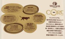 画像2: ウェルネスコア(高たんぱく質・穀物不使用) 室内猫用(1歳以上) サーモン【内容量:各種】
